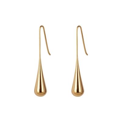 Earrings Titanium